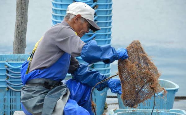 広田町の漁師さん